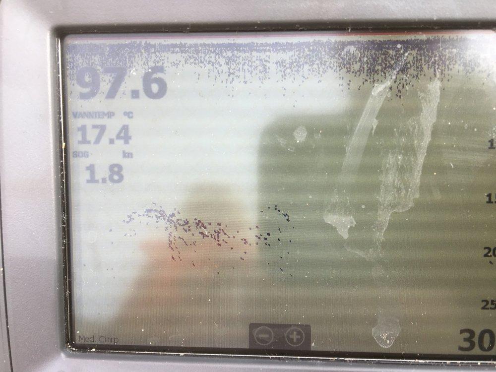 E383BCEB-B82A-466A-A23E-AAFDF6F76CD4.thumb.jpeg.30ef02bd5762b091eaa5717b5a4cb886.jpeg