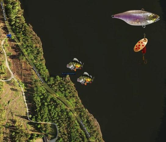 Gjersjøen_Kurudodden_abbor_v2.jpg
