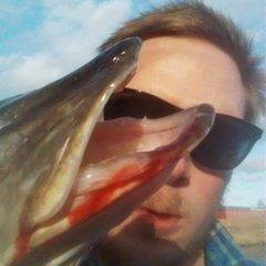Fishybuiz